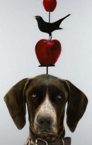 signup-dog